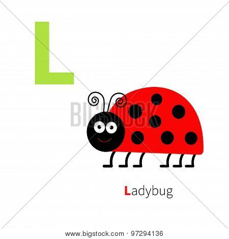 Letter L Ladybug Zoo Alphabet. English Abc With Animals Education Cards For Kids Isolated White Back