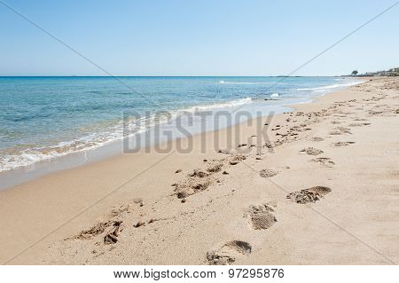 Beautiful Tropical Beach With Turquoise Water And White Sand