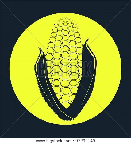 Ear Of Corn, Plant Yellow Concept
