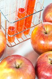 stock photo of modification  - vegetable test apple Genetic Modification Scientific Experiment - JPG