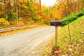 picture of mailbox  - Autumn scene with road and mailbox - JPG