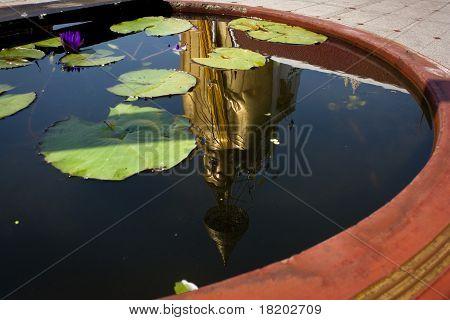 Big Buddah Reflection