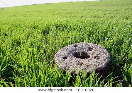 Old Millstone On Crop Spring Field