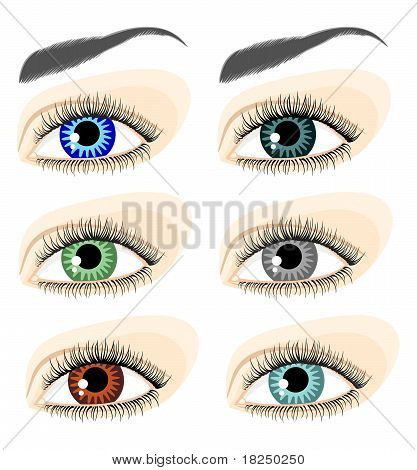 Eyes Of Different Colors
