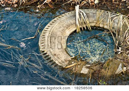 Large Truck Tire Dumped In The Water