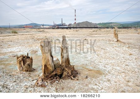Dead ecological desert