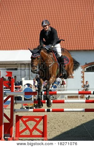 show-jumping