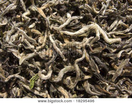 White tea - Bai Cha