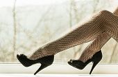 Sexy Female Legs In Black Fishnet Tights On Window Sill poster
