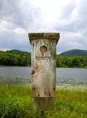 Wooden Bird Feeder Overlooking Lake