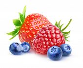 Isolated Fresh Berries poster