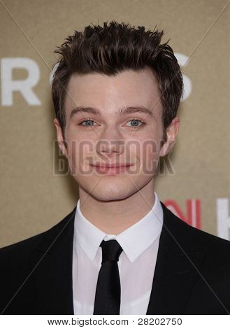LOS ANGELES - DEC 11:  Chris Colfer arrives to the CNN Heroes: All-Star Tribute 2011  on December 11, 2011 in Los Angeles, CA.