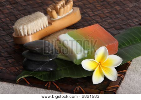Tropical Beauty Day Spa