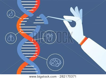 Dna Engineering Genome Crispr Cas9