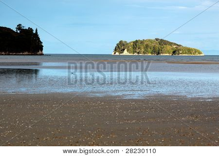 Coast Line And Small Island In The Abel Tasman National Park