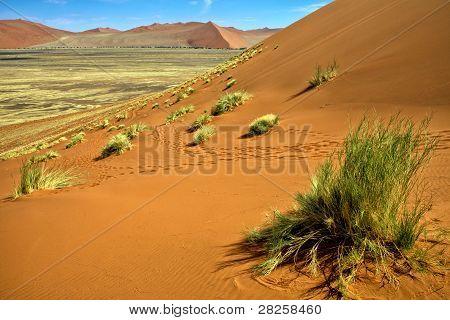View From The Une 45 Near Sossusvlei & Sesriem Africa Namib Naukluft Park