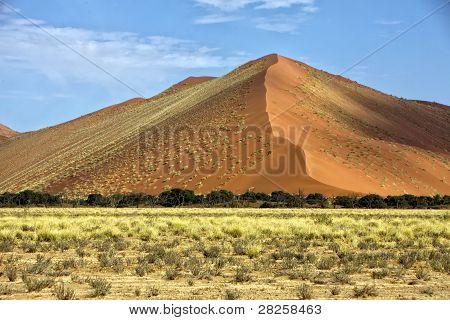 Vast Orange Dune At Sossusvlei Namib Naukluft Park Namibia