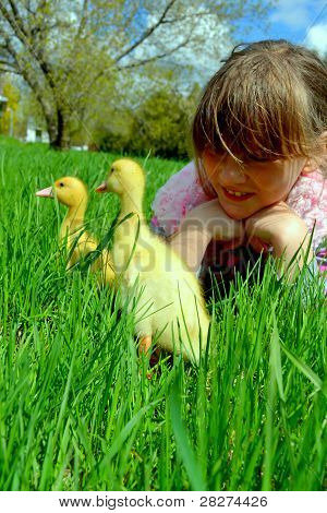 Happy child with ducklings