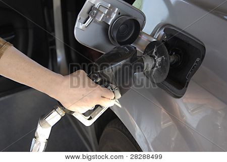 Usa_15 Cent Galon Cheap Gasoline