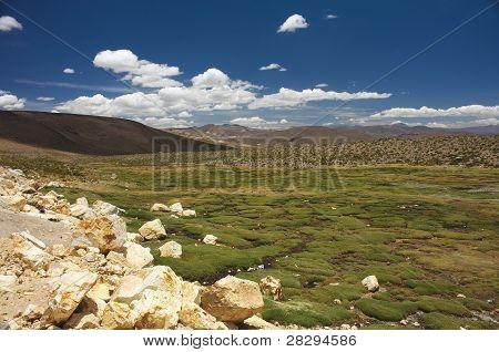 Southamerican Plain