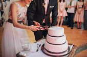 Couple Hands Cutting Wedding Cake. Happy Bride And Groom Cut The Wedding Cake poster