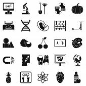 Scientific Approach Icons Set. Simple Set Of 25 Scientific Approach Icons For Web Isolated On White  poster