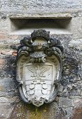 image of armorial-bearings  - Close up of a coat of arms - JPG