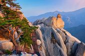 View of stones and rock formations from Ulsanbawi rock peak on sunset with staircase. Seoraksan Nati poster