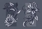 Graphic Detailed Graphic Black And White Roses Flower With Stem And Leaves. On Gray Background. Vect poster