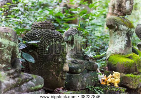 Buddha Kopf den Kopf in Wat Umong Chiang Mai