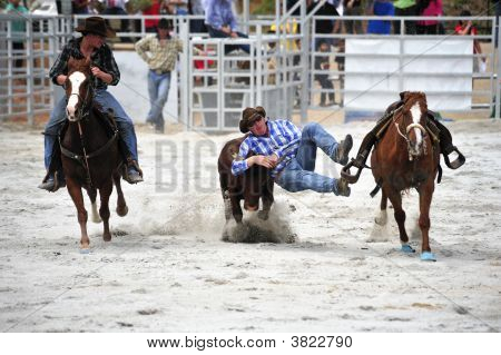 Bull Wrestling At A Rodeo Show
