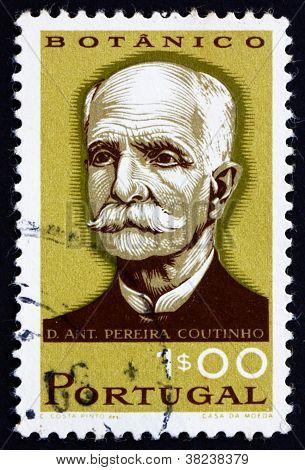Postage stamp Portugal 1966 Antonio Pereira Coutinho, Botanist