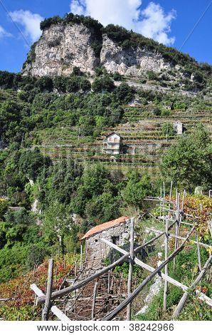 Terrazas de Amalfi