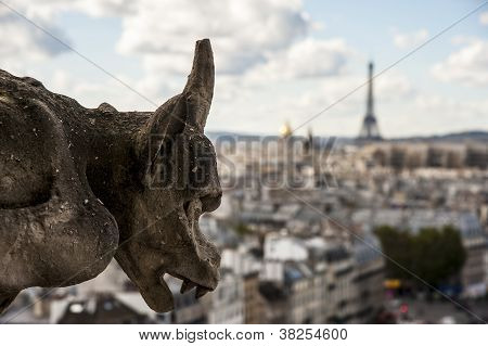 Chimera On Notre Dame Of Paris