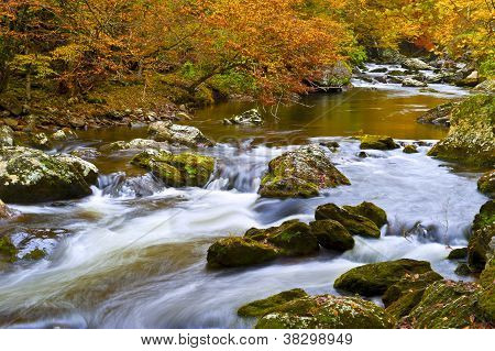 Slow Moving Creek In Fall