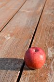 Freshly Picked Red Apple On Weathered Picnic Table poster