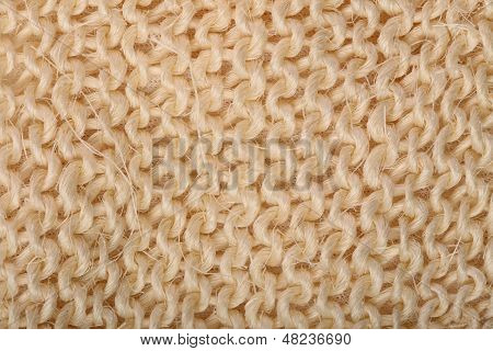 Sisal Abstract Background