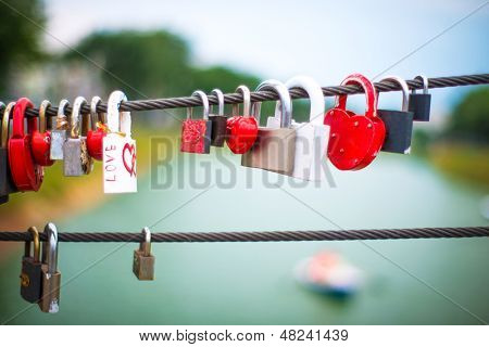Wedding Locks on rope bridge