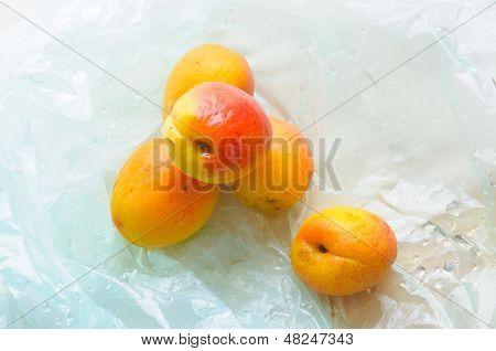 Five Fresh Apricots