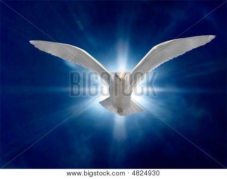 Espírito Santo 2