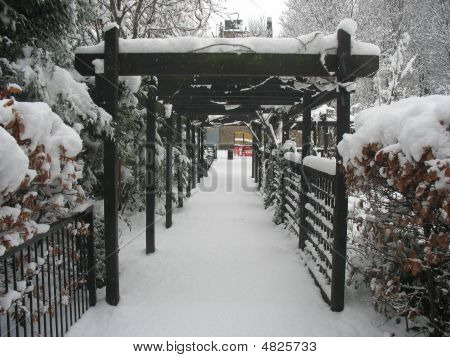 City Garden In The Snow