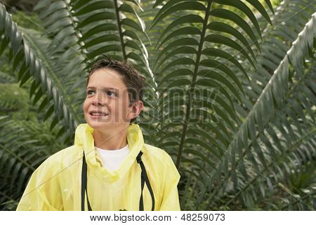 Young boy in raincoat standing in front of large fern during field trip