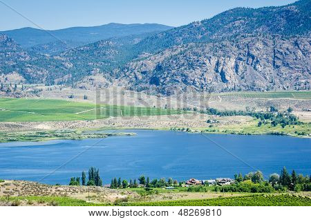 Vineyards in the Okanagan Valley overlooking Skaha Lake.