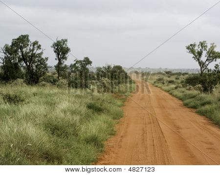 Rot Safari-Straße