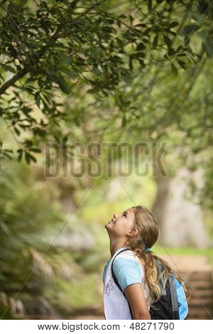 Side view of young girl looking up at tree in forest