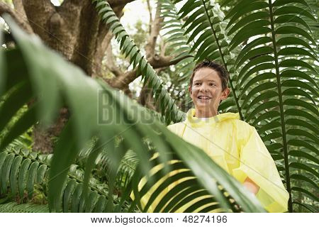 Young boy standing by large fern in forest during field trip
