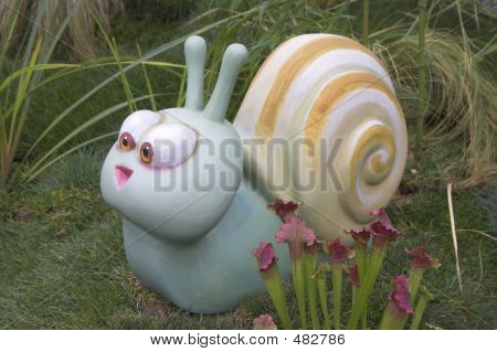 Amused Snail