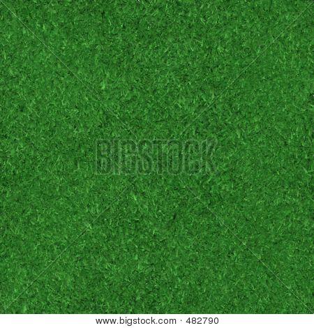 Background Grass.
