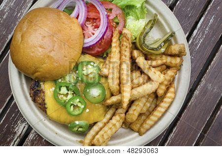 Gourmet burger and fries