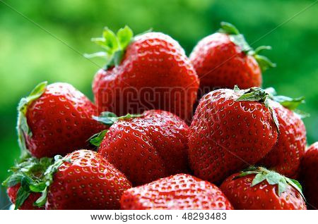 Fresh strawberries on summer with green background, strawberries,seasonal fruits on spring,red fruit